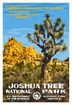 Joshua Tree 25th Anniversary