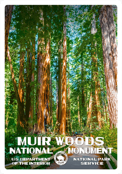 Muir Woods National Monument Sticker