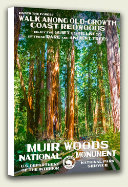 Muir Woods National Monument Canvas Print