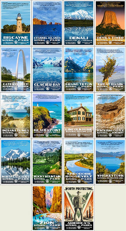 Postcard Collection | Series D