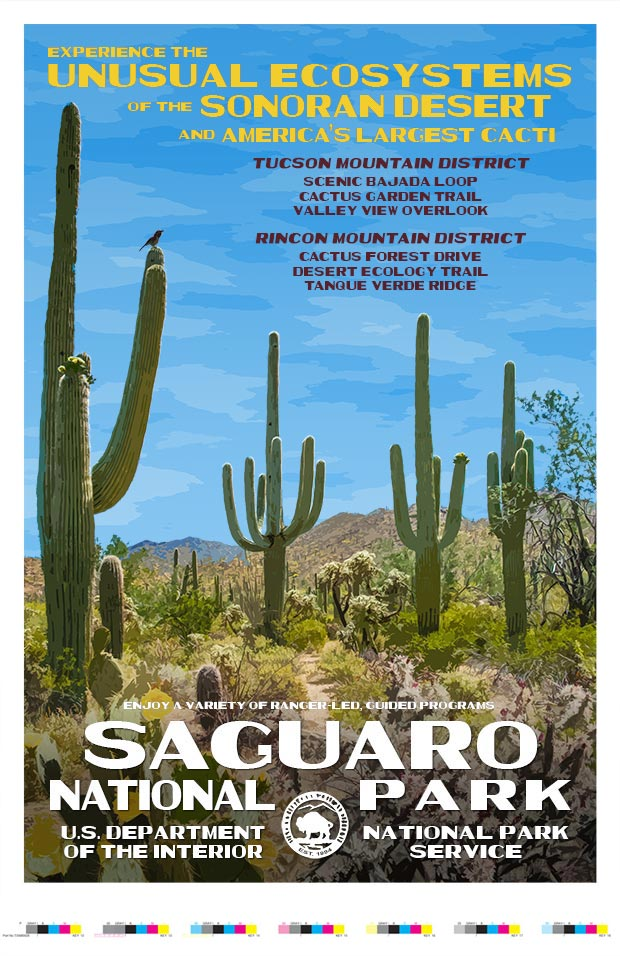 Saguaro National Park Artist Proof