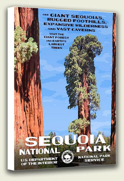 Sequoia National Park Canvas Print