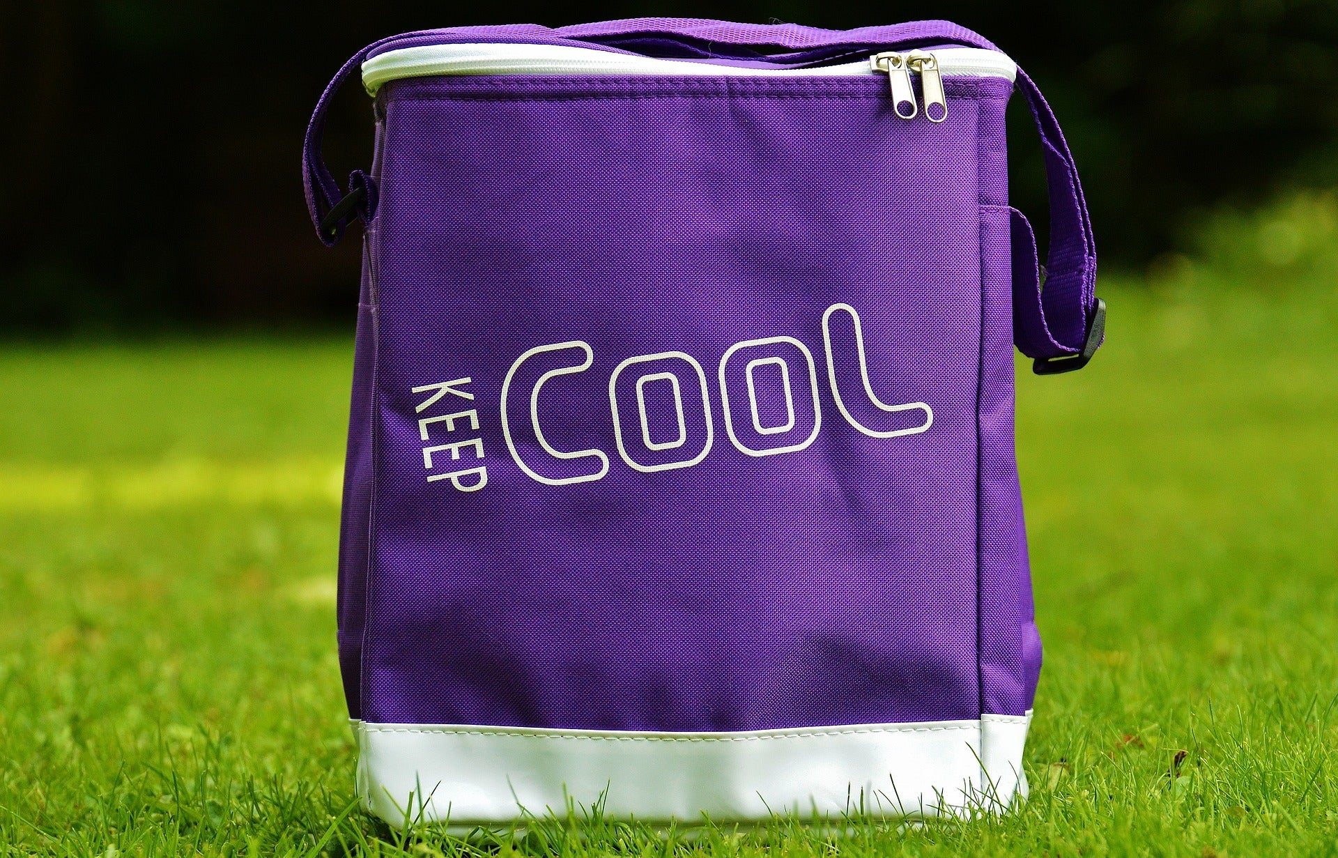 Trendy Insulated Round Cooler Bags