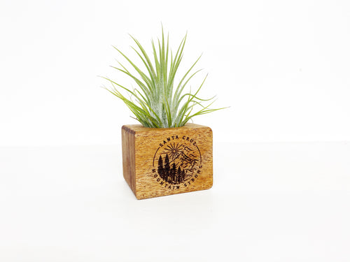 Santa Cruz Mountain Strong - Small Wooden Planter Box