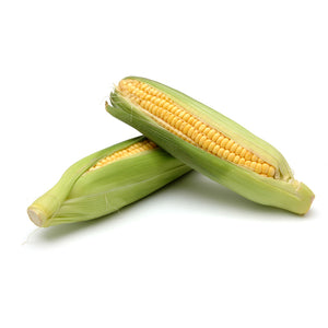 Organic Super Sweet Corn - Each
