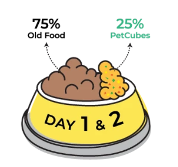 Day 1 & 2 of transitioning to Petcubes
