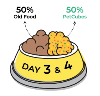 Day 3 & 4 of transitioning to Petcubes