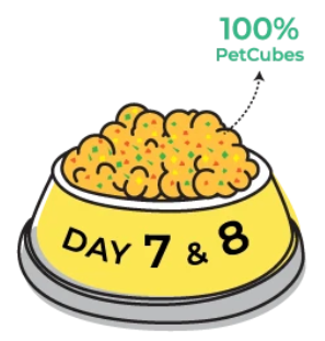 Day 7 & 8 of transitioning to Petcubes