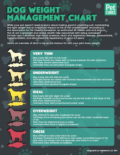 dog weight chart is commonly known to veterinarians, dog experts and dog owners