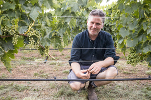 Winemaker Alex McKay crouches down amongst ripening grapes in the vineyard.