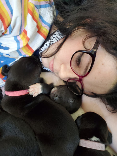 closeup on woman laying with foster puppies