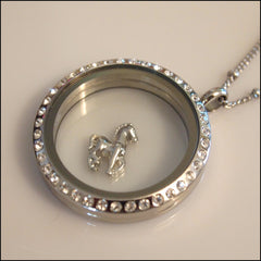 Silver Horse Floating Charm - Find Something Special