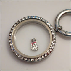 Cat Floating Charm - Find Something Special