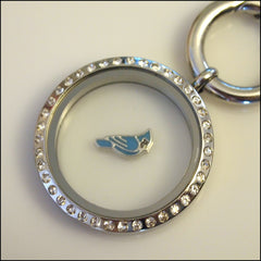 Blue Jay Floating Charm - Find Something Special