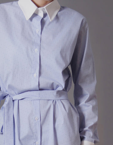 Belted Blue Shirtdress