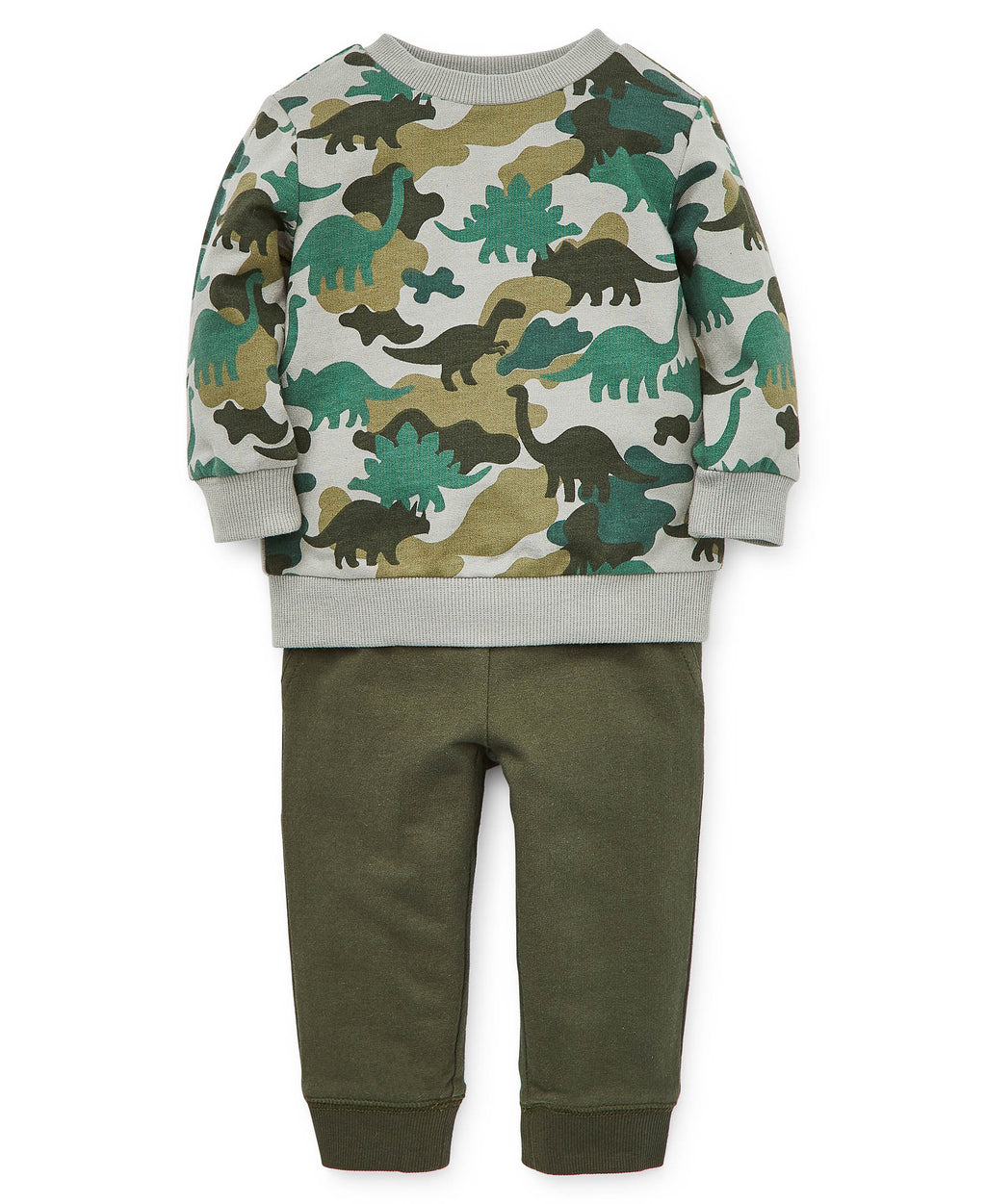 Dino Toddler Swearshirt and Pants