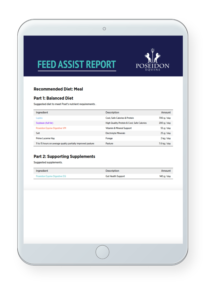 feed assist report