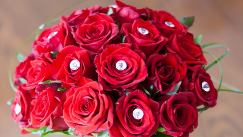 How roses came to be THE Valentine's Day flower