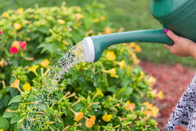 Tip of the Week: DIY Watering Machine