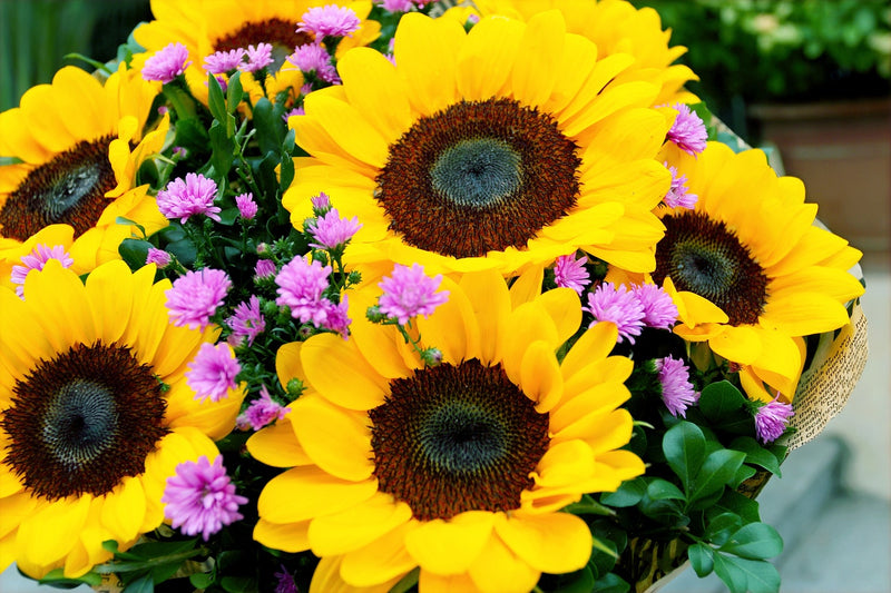 Sunflower Ideas for your Wedding Day