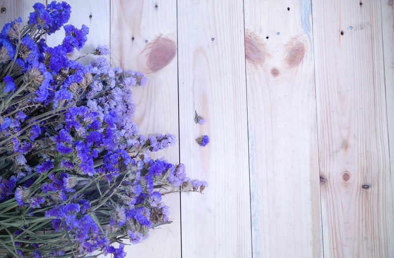 Feature Flower Friday: Lavender