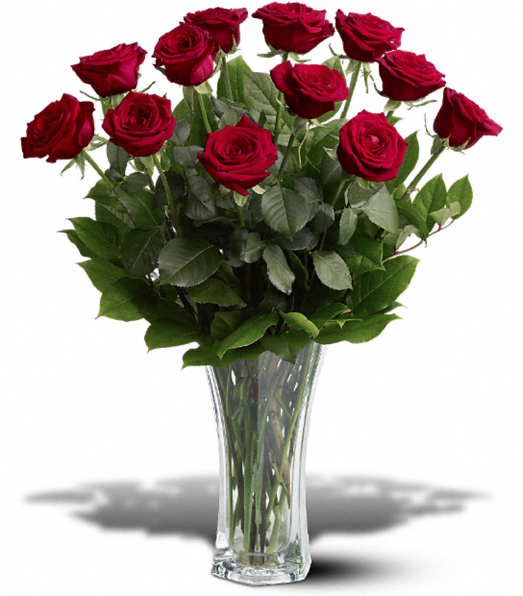 Premium Long Stem Dozen Roses