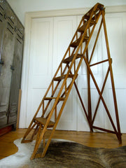 Antique wooden ladder library steps