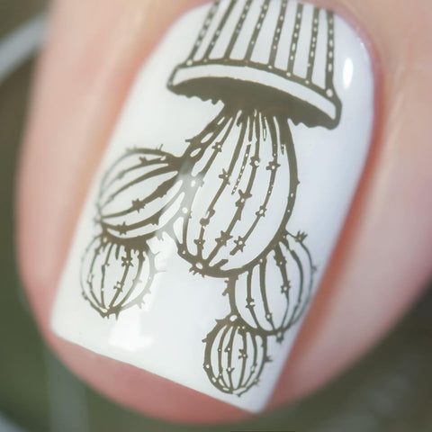 Stamped in Cacti