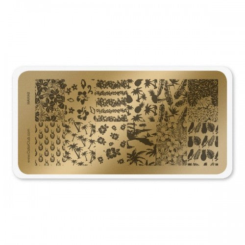 Stamping Plate Hawaii