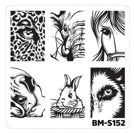 Nail Art Stamping Plates-Fuzzy and Ferocious - BM-S152, Don't Blink