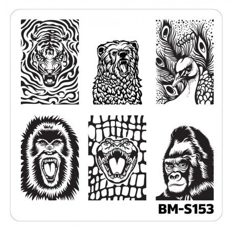 Nail Art Stamping Plates-Fuzzy and Ferocious - BM-S153, Fangs and Feathers