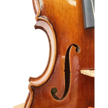 Load image into Gallery viewer, Li Zhijie Violin Guarnerius 2018