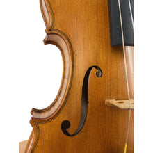 Load image into Gallery viewer, A Wilfer Violin  2019-3 4/4