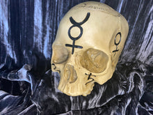 Load image into Gallery viewer, Sigil Skull Statue Large