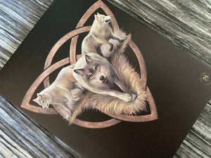 Wolf Trio Canvas Print - Anne Stokes 13821
