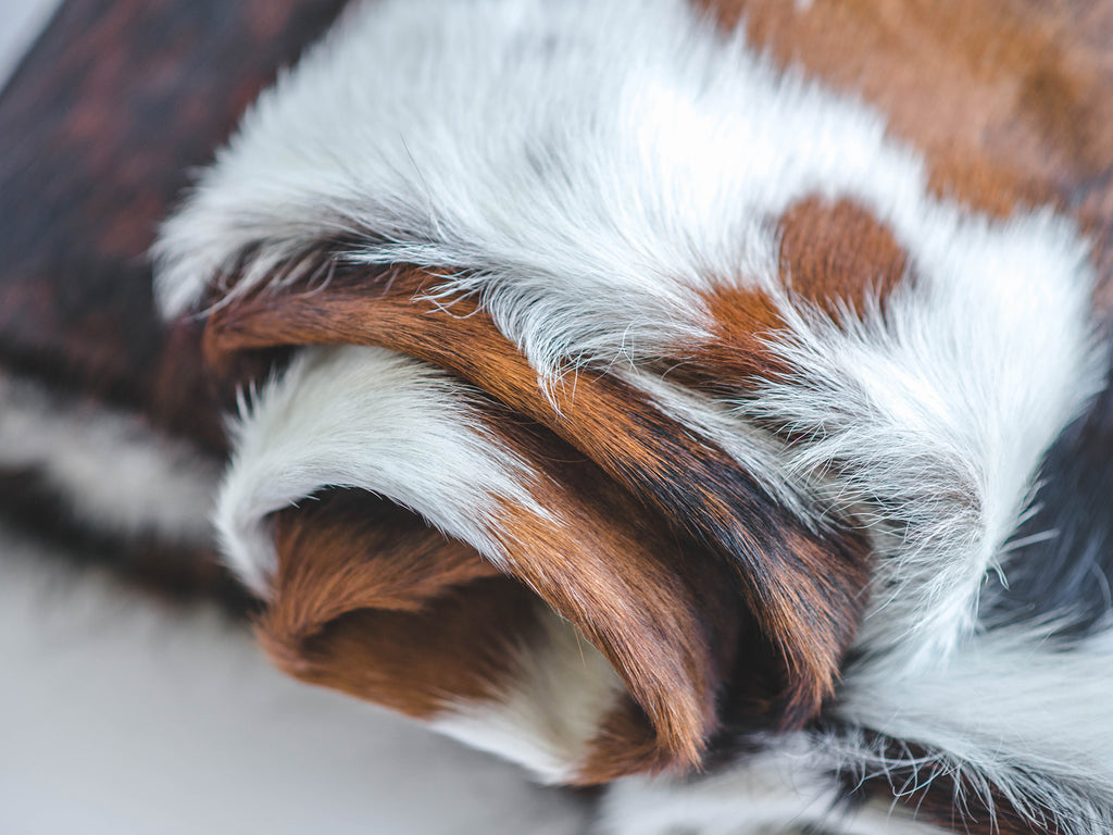 Top-Notch Tricolor Cowhides - Actual Pictures