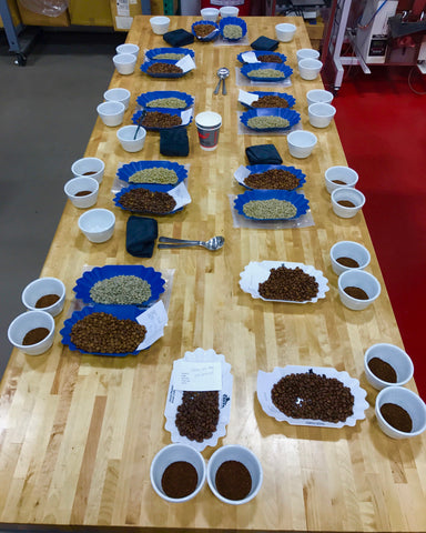 Private Coffee Cupping