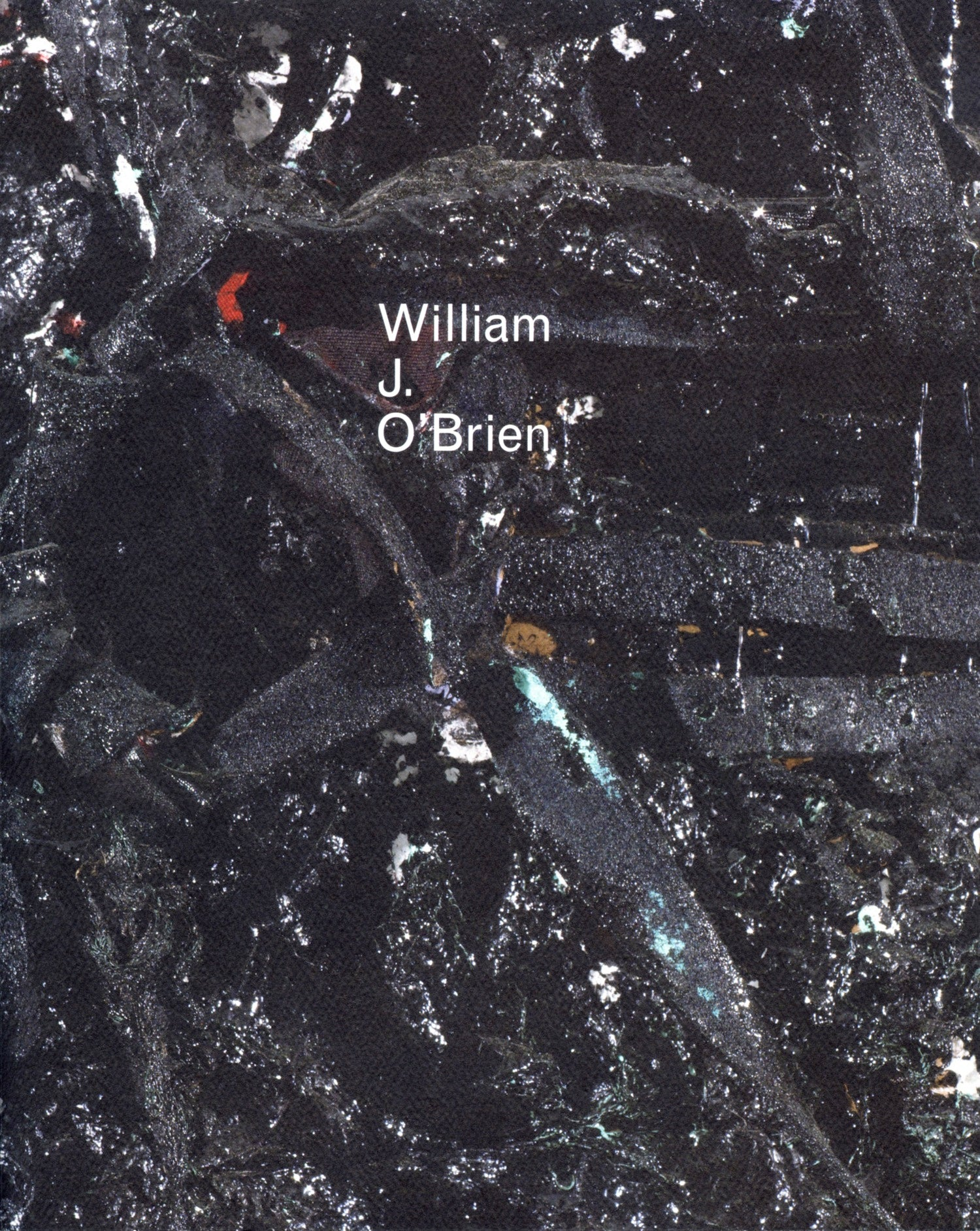 William J. O'Brien - Book at Kavi Gupta Editions