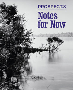 Prospect.3: Notes for Now - Book at Kavi Gupta Editions