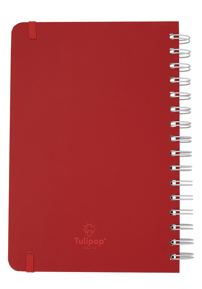 Bubble notebook back