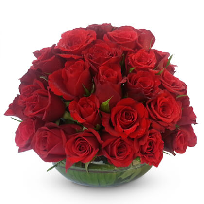 Exotic Red Roses