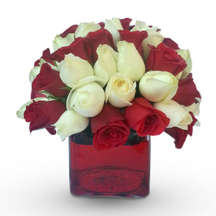 Red Attraction - florista-in