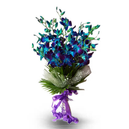 True Blue Orchids - florista-in
