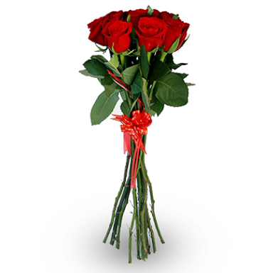 10 hand tied red roses