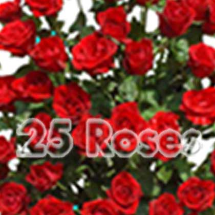 Fresh 25 Red Roses - florista-in