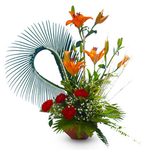 Feather Touch - florista-in