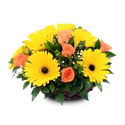 Send Happiness - florista-in