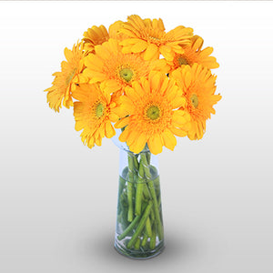 Bright Sunny flowers - florista-in