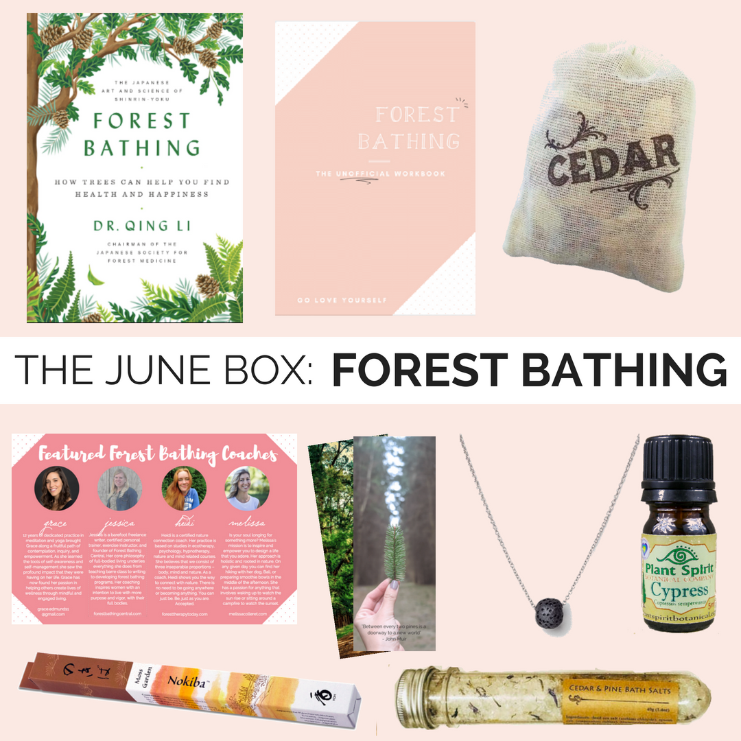 Forest Bathing Box