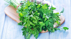Herbs - Parsley - Organic Family Farm